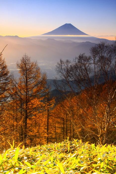 29年11月の富士(17)甘利山の富士_e0344396_09122920.jpg