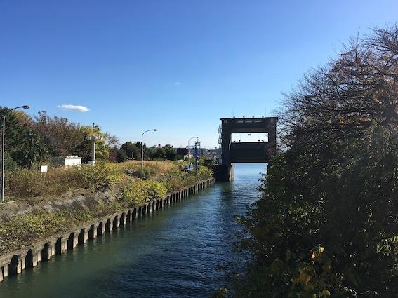 江戸川サイクリング 2017.11_c0016913_12561629.jpg