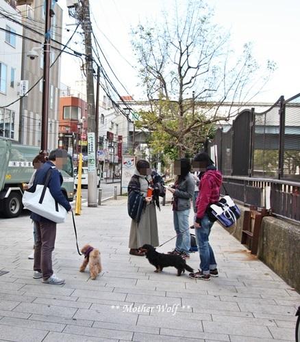 第23回マザーウルフ遠足 横浜レポート_e0191026_15375435.jpg