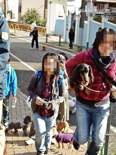 第23回マザーウルフ遠足 横浜レポート_e0191026_17221672.jpg