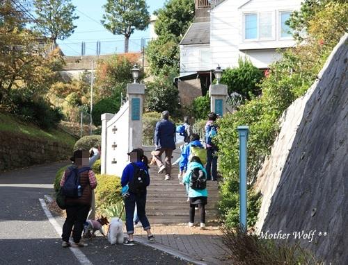 第23回マザーウルフ遠足 横浜レポート_e0191026_17225836.jpg