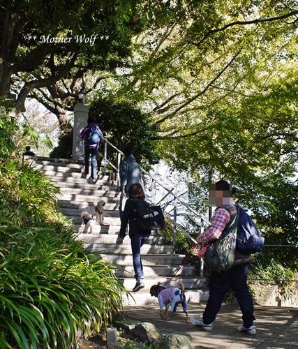 第23回マザーウルフ遠足 横浜レポート_e0191026_17240388.jpg