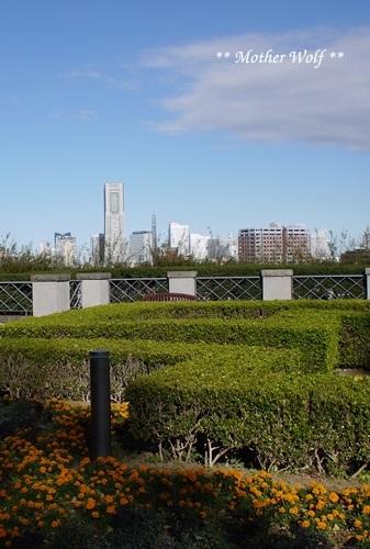 第23回マザーウルフ遠足 横浜レポート_e0191026_17445518.jpg