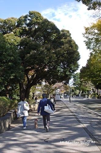 第23回マザーウルフ遠足 横浜レポート_e0191026_18142654.jpg
