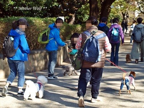 第23回マザーウルフ遠足 横浜レポート_e0191026_18144975.jpg