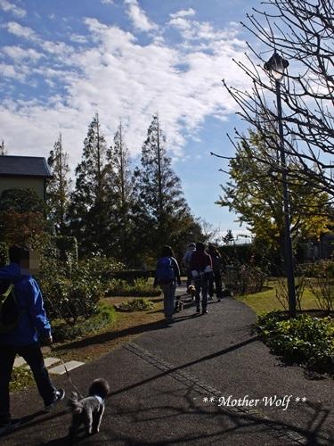 第23回マザーウルフ遠足 横浜レポート_e0191026_18264163.jpg