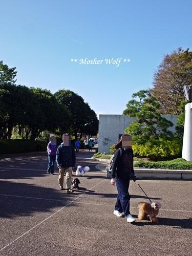 第23回マザーウルフ遠足 横浜レポート_e0191026_20033474.jpg