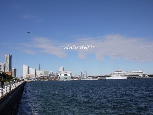 第23回マザーウルフ遠足 横浜レポート_e0191026_20480765.jpg
