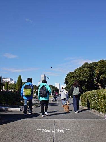 第23回マザーウルフ遠足 横浜レポート_e0191026_23471458.jpg