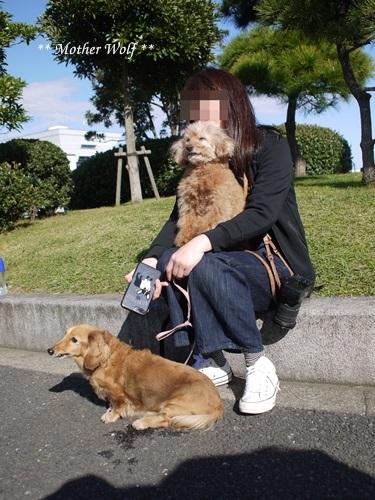第23回マザーウルフ遠足 横浜レポート_e0191026_23574905.jpg