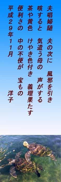 d0011955_07194923.jpg