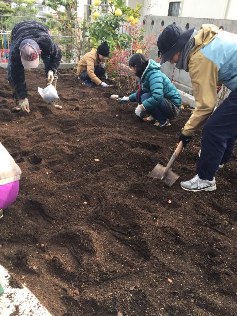 2017年度園庭の花や野菜4_f0324461_21241120.jpg
