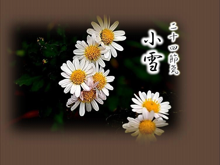 f0214467_09373565.jpg