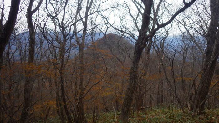 青麻山(34回目)とあけら山に登る ~ 2017年11月18日_f0170180_06505481.jpg