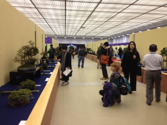 初めての大盆栽展_c0100195_11251458.jpg