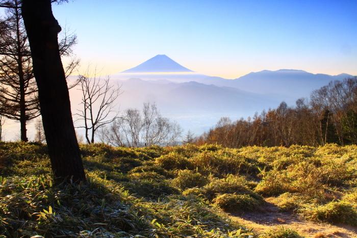 29年11月の富士(18)甘利山の富士_e0344396_09150191.jpg