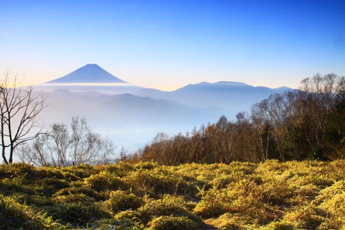 29年11月の富士(18)甘利山の富士_e0344396_09150979.jpg