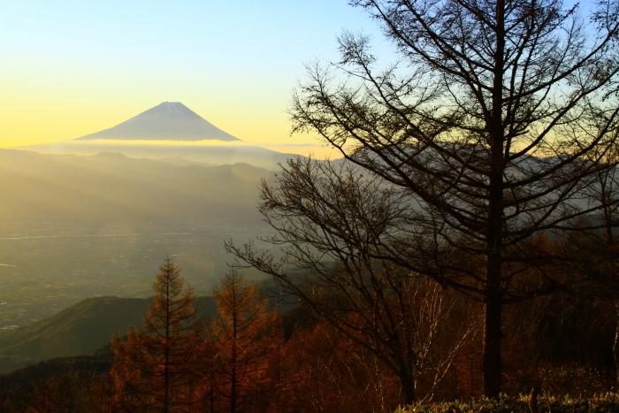 29年11月の富士(18)甘利山の富士_e0344396_09152380.jpg
