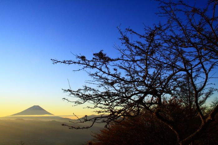 29年11月の富士(18)甘利山の富士_e0344396_09153952.jpg