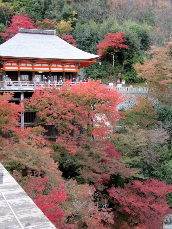 清水寺は盛りです_e0048413_20490905.jpg