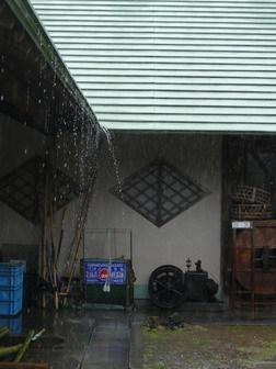 雨のち晴れ_a0123836_17344958.jpg