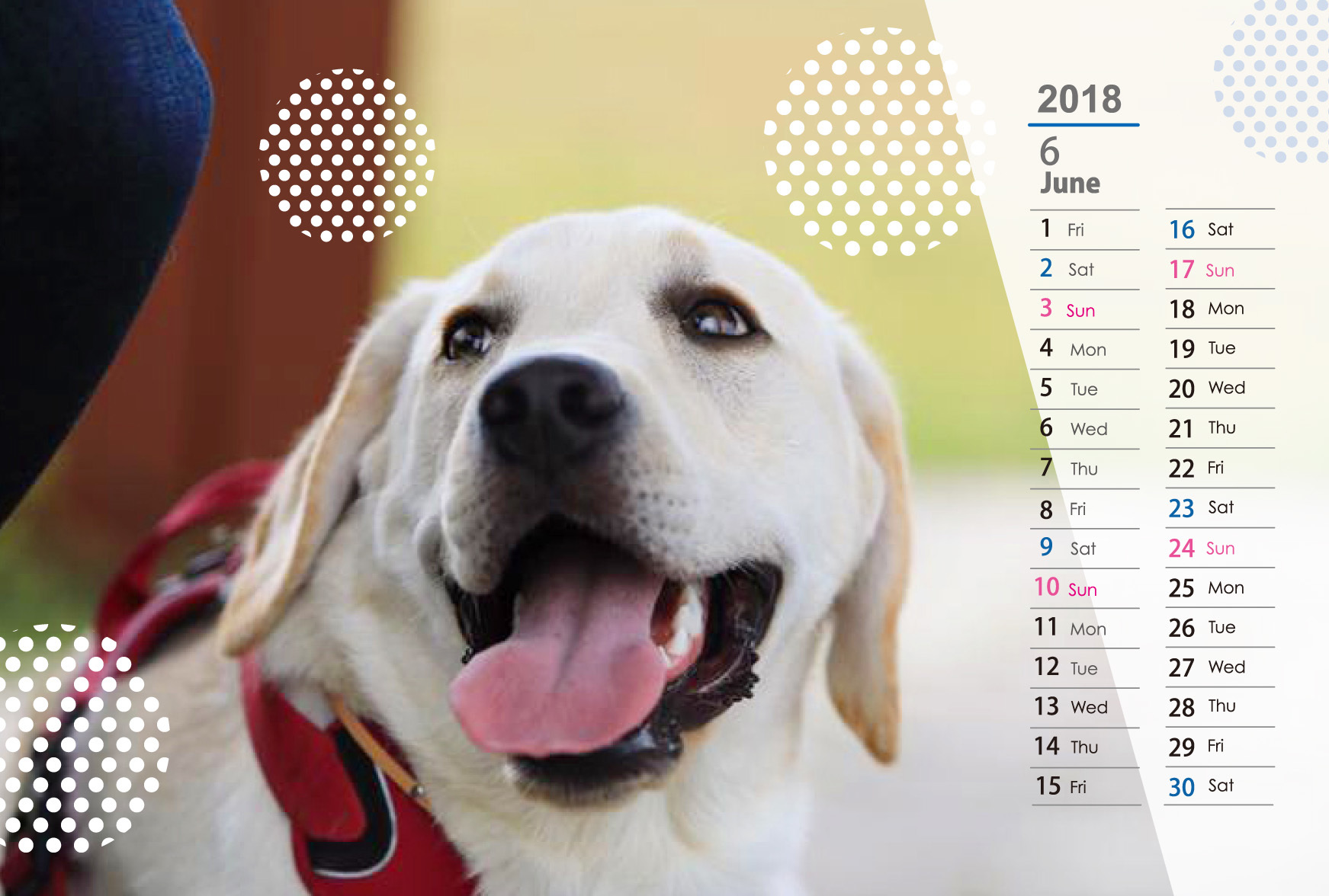 TIKILOVEカレンダー 2018_f0051481_10445803.jpg