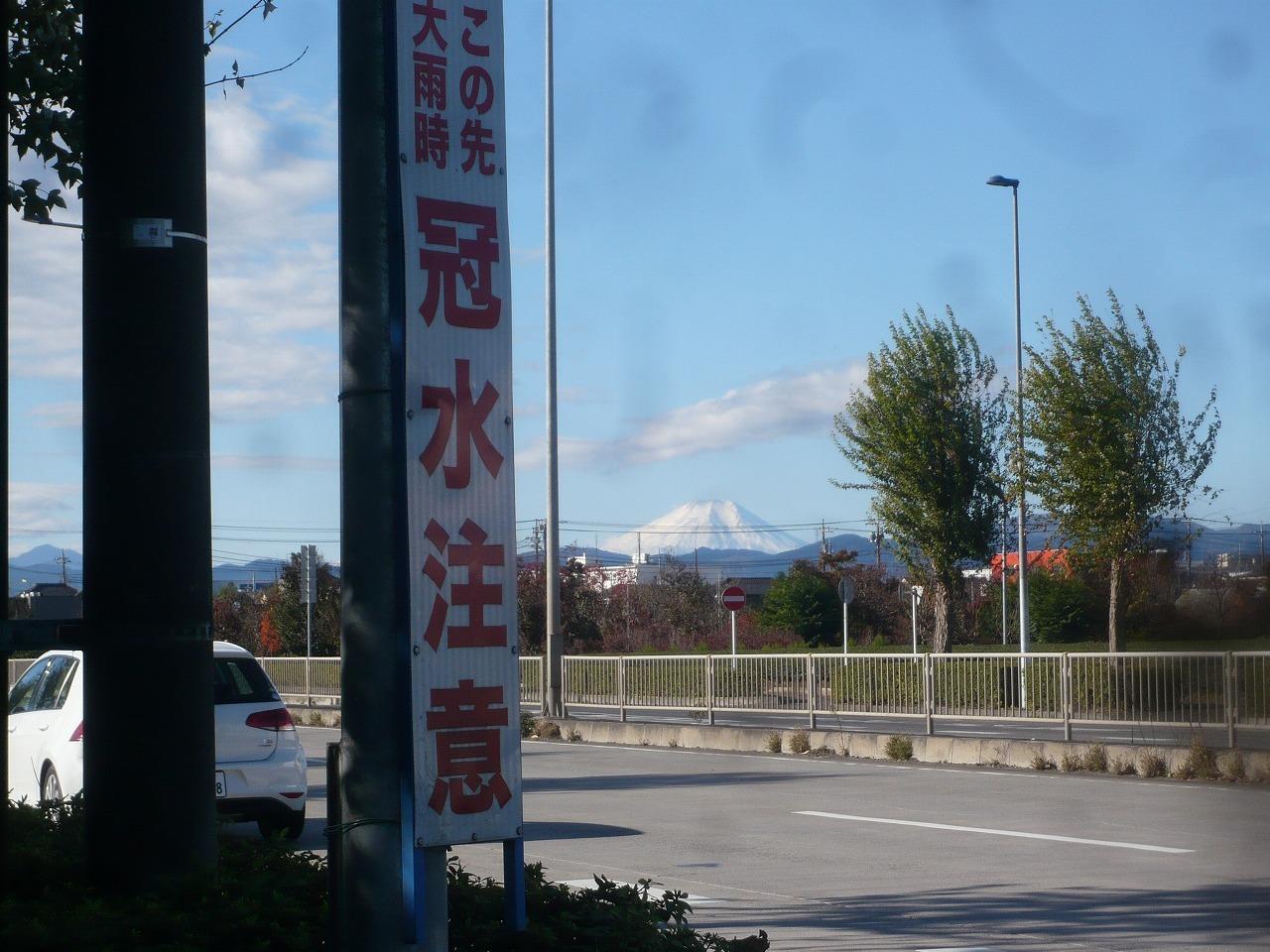 ポタリング 青梅の紅葉・臨川庭園_a0262093_12105848.jpg
