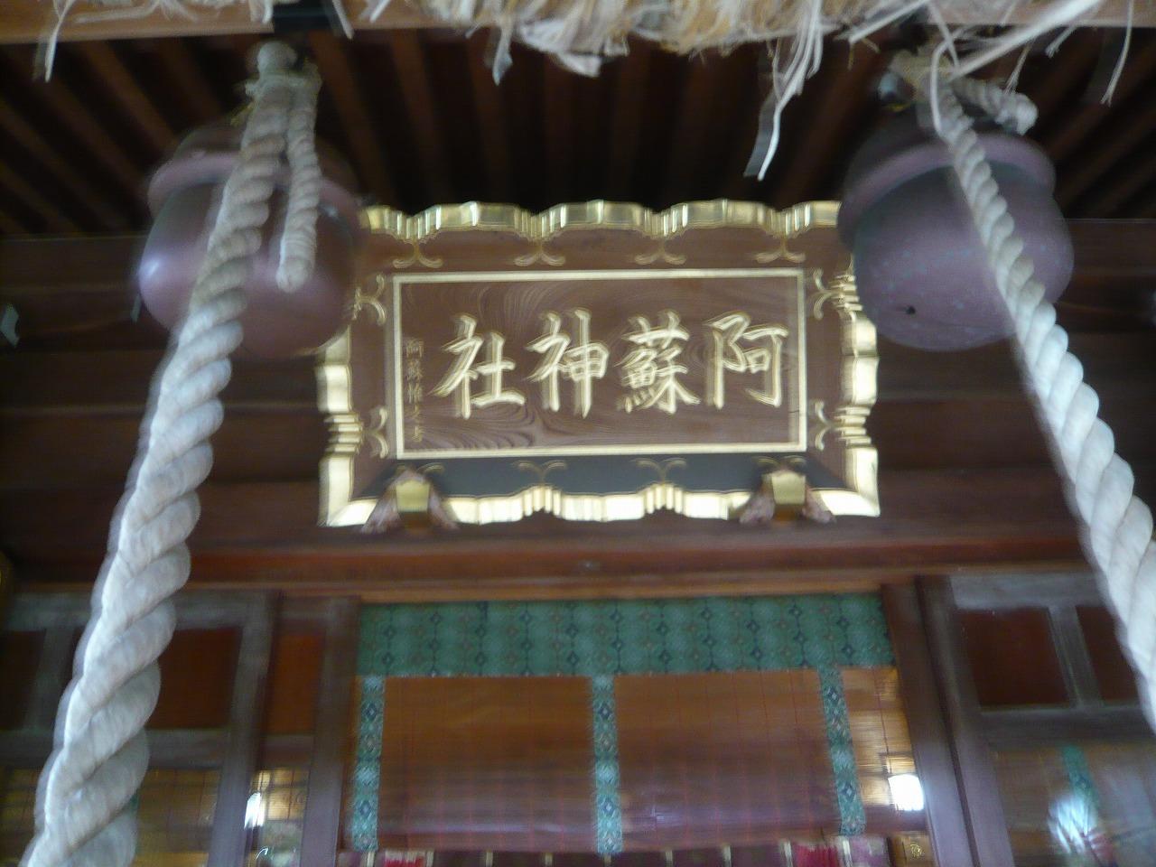 ポタリング 青梅の紅葉・臨川庭園_a0262093_13271296.jpg