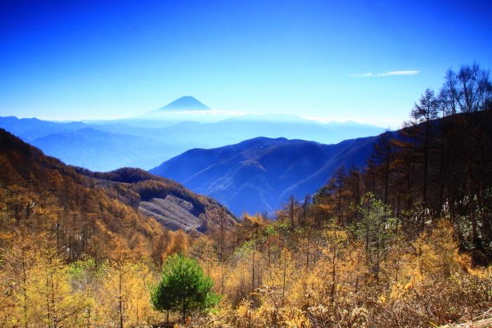 29年11月の富士(19)池の茶屋林道の富士_e0344396_15013571.jpg