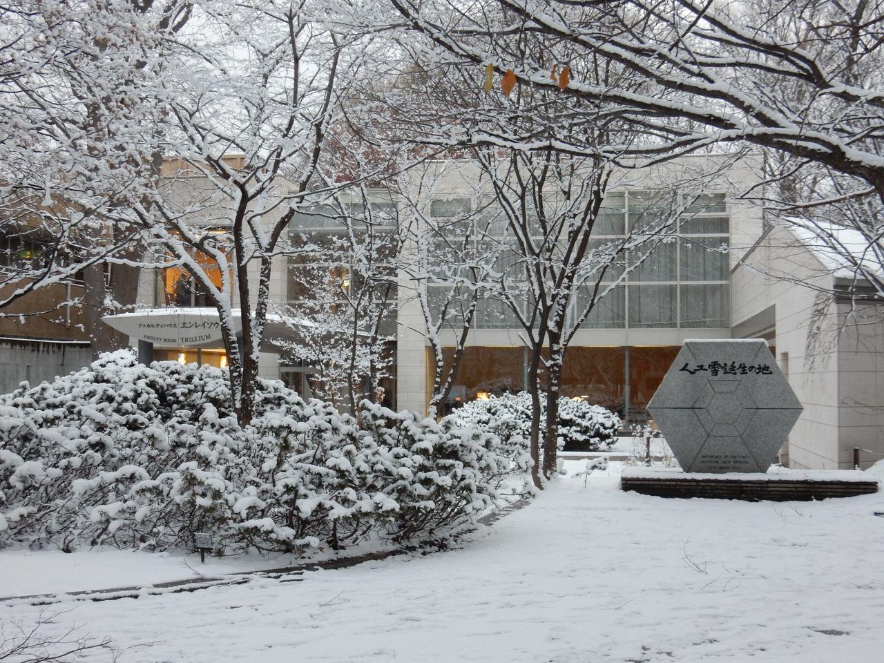 冬景色のキャンパス_c0025115_21440181.jpg