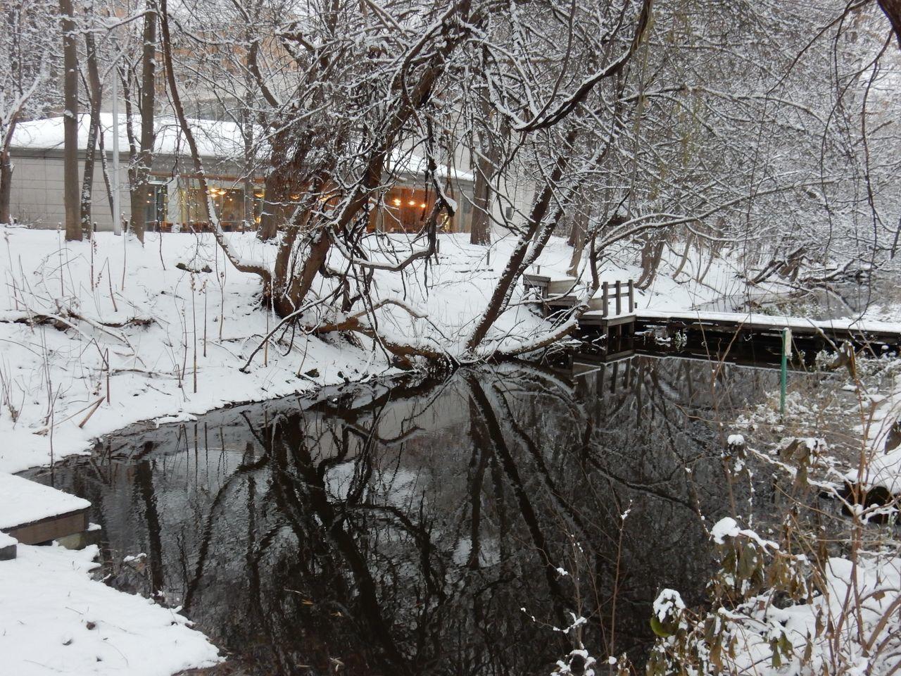 冬景色のキャンパス_c0025115_21441374.jpg