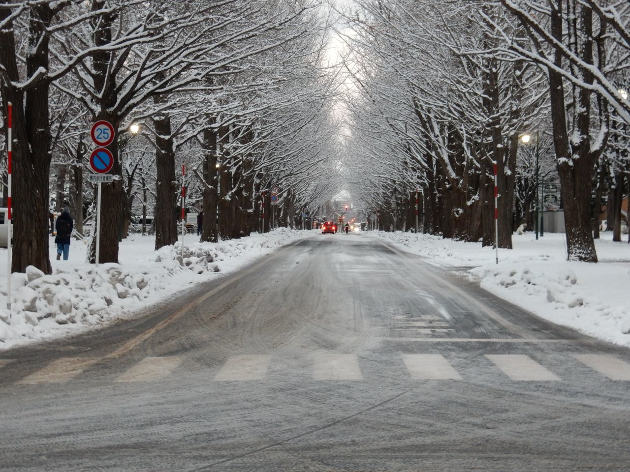 冬景色のキャンパス_c0025115_21442573.jpg