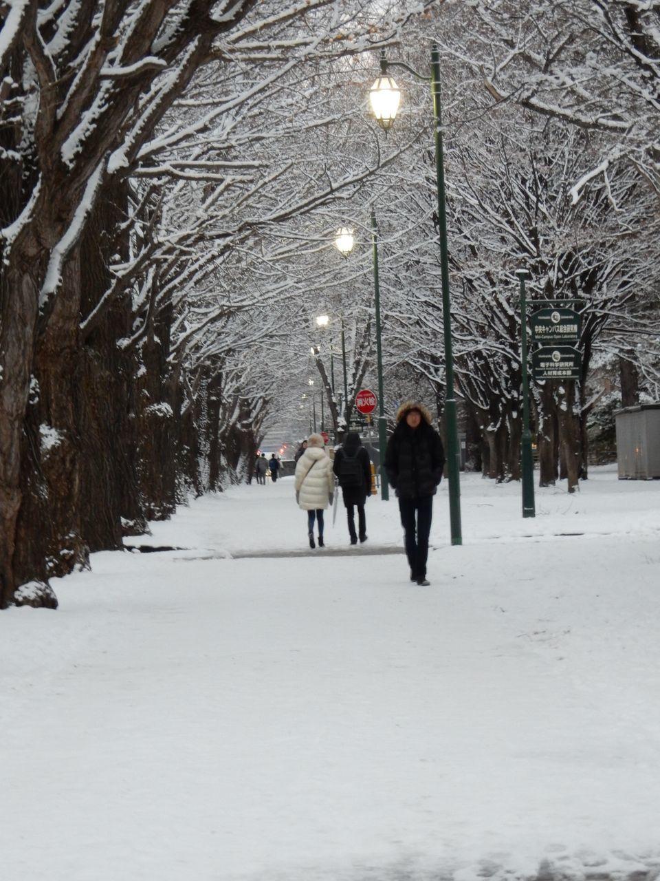 冬景色のキャンパス_c0025115_21443263.jpg