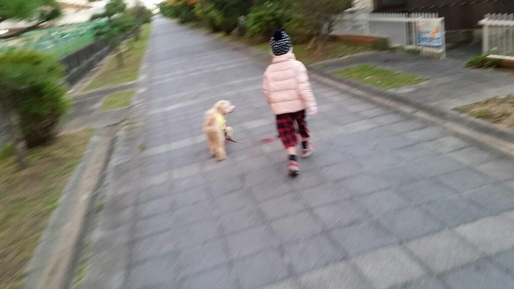 上手な散歩_e0136815_20161019.jpg