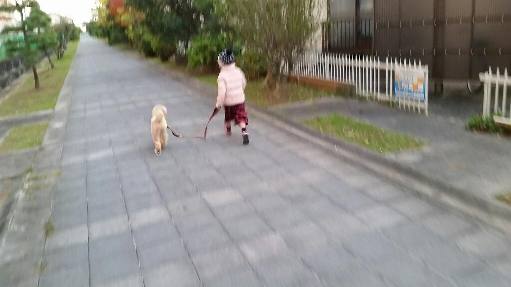 上手な散歩_e0136815_20161651.jpg