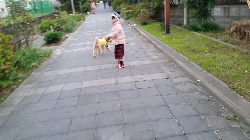 上手な散歩_e0136815_20162273.jpg
