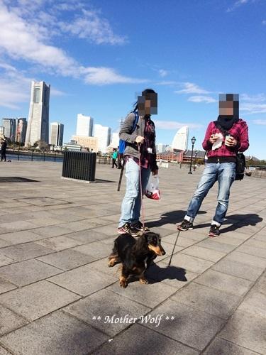 第23回マザーウルフ遠足 横浜レポート_e0191026_16252207.jpg