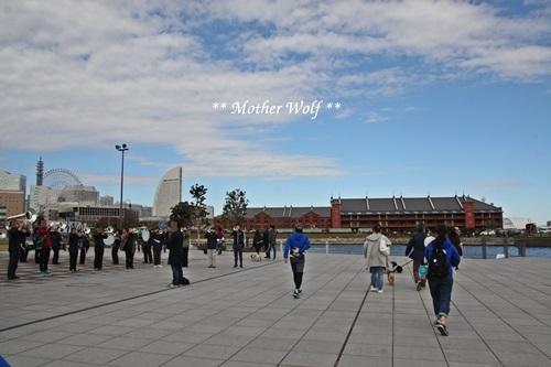 第23回マザーウルフ遠足 横浜レポート_e0191026_17575251.jpg