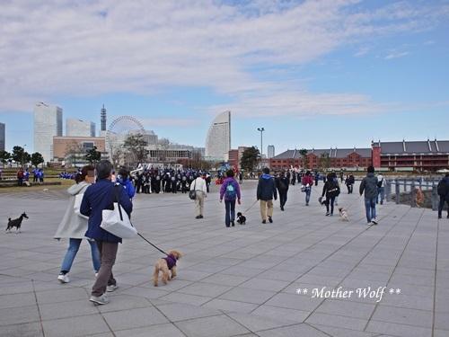 第23回マザーウルフ遠足 横浜レポート_e0191026_18005547.jpg