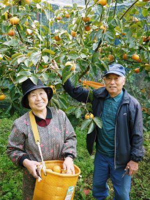 熊本県山鹿市鹿北町柏ノ木(かやのき)の収穫祭(産業祭)に行ってきました!_a0254656_17381691.jpg