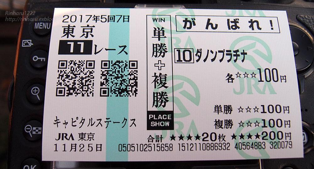 2017.11.25 ディサイファ様応援グッズ@ジャパンカップ前日_f0250322_2181283.jpg
