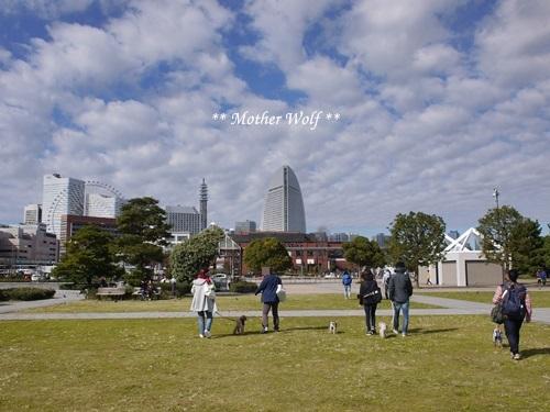 第23回マザーウルフ遠足 横浜レポート_e0191026_21271945.jpg