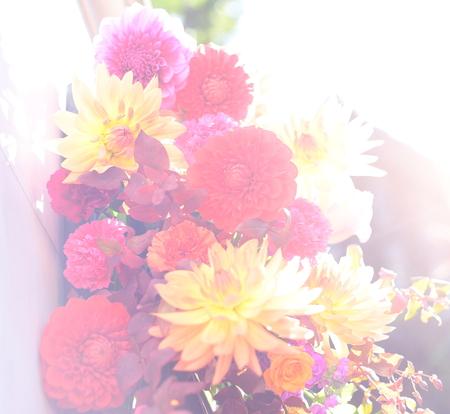 秋の装花 シェ松尾松濤レストラン様へ ダリア、生命の色_a0042928_17425723.jpg