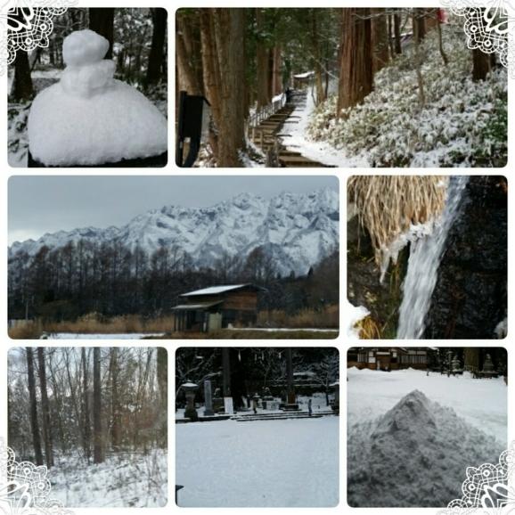 真冬の装い♪_d0219834_13482328.jpg