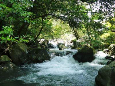 きらり水源村の取り組みを紹介 水源ばぁばの『陽だまり弁当』&『水源 食の文化祭』は明日(11/26(日))開催です!_a0254656_17301325.jpg