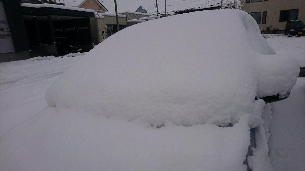 雪かき_b0106766_09531679.jpg