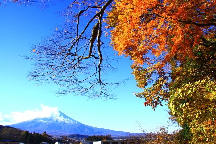 29年11月の富士(21)富士吉田の富士_e0344396_16570870.jpg