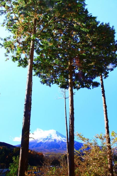 29年11月の富士(21)富士吉田の富士_e0344396_16572188.jpg