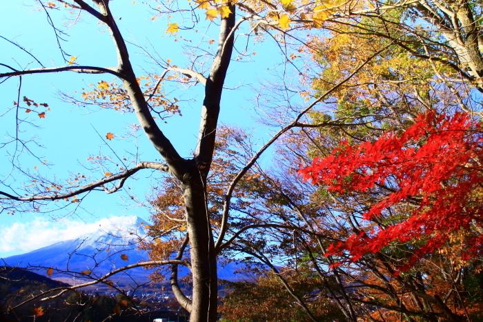 29年11月の富士(21)富士吉田の富士_e0344396_16572958.jpg