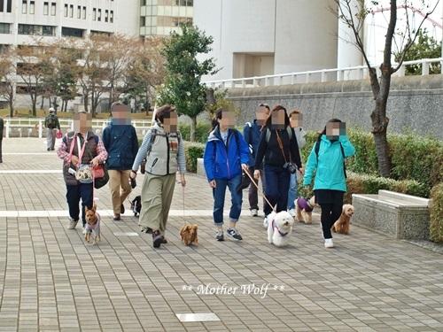 第23回マザーウルフ遠足 横浜レポート_e0191026_22381664.jpg